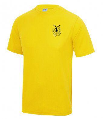 north belfast unbranded performance tee shirt 2 24910 p