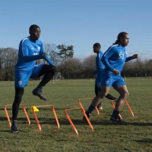 samba hurdles 33885 p
